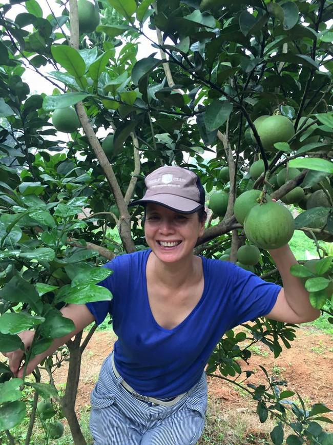 Sát Tết, NSƯT Chiều Xuân thu hoạch cả nghìn quả bưởi ở khu vườn của gia đình - Ảnh 10.