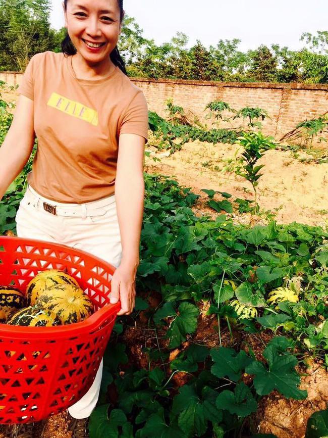 Sát Tết, NSƯT Chiều Xuân thu hoạch cả nghìn quả bưởi ở khu vườn của gia đình - Ảnh 20.