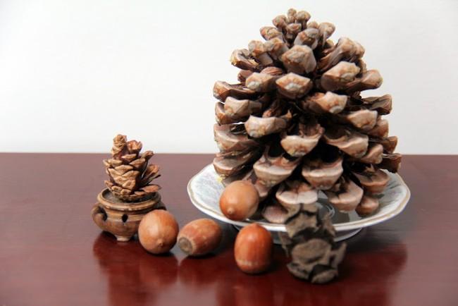 Vô vàn lợi ích sức khỏe và làm đẹp từ hạt thông, bất cứ ai ăn cũng nên biết - Ảnh 2.
