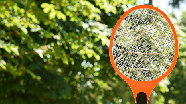 Khuyến cáo cách chống và đuổi kiến ba khoang tại nhà mà không cần dùng tới các hóa chất độc hại - Ảnh 5.