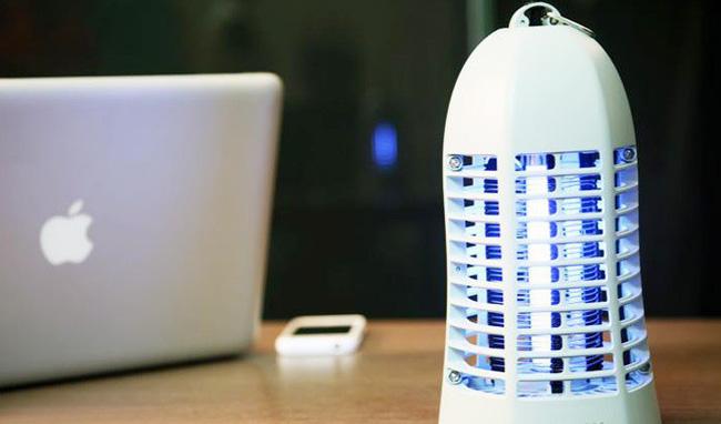 Khuyến cáo cách chống và đuổi kiến ba khoang tại nhà mà không cần dùng tới các hóa chất độc hại - Ảnh 6.
