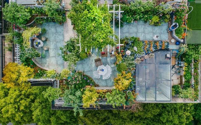 Tận dụng mái nhà bỏ hoang, người phụ nữ yêu hoa biến không gian thành khu vườn dịu dàng sắc hoa - Ảnh 3.