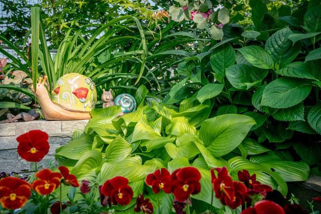 Tận dụng mái nhà bỏ hoang, người phụ nữ yêu hoa biến không gian thành khu vườn dịu dàng sắc hoa - Ảnh 17.