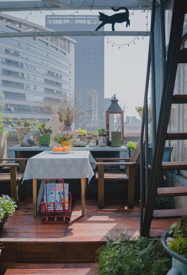 Tận dụng mái nhà bỏ hoang, người phụ nữ yêu hoa biến không gian thành khu vườn dịu dàng sắc hoa - Ảnh 19.