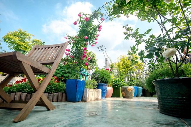 Tận dụng mái nhà bỏ hoang, người phụ nữ yêu hoa biến không gian thành khu vườn dịu dàng sắc hoa - Ảnh 13.