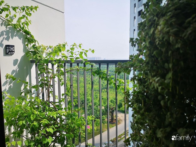 Căn hộ nhỏ thiết kế theo phong cách Nhật của cặp vợ chồng trẻ yêu thích cuộc sống an yên ở Hà Nội - Ảnh 17.
