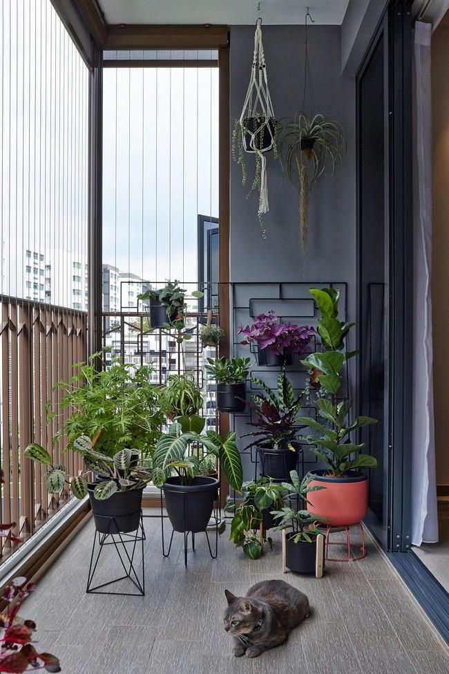 Tư vấn thiết kế nhà ở gia đình có diện tích (6x12m) cho 4 người với chi phí gần 3 tỷ đồng - Ảnh 14.