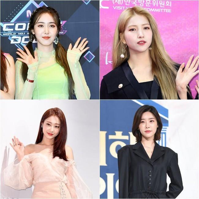 Nhiều idol Hàn hủy lịch trình dự Seoul Fashion Week sau sự ra đi đột ngột của Sulli - Ảnh 2.