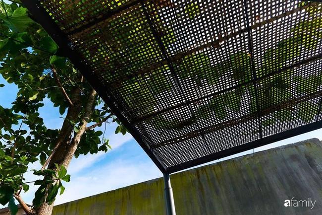 Ngôi nhà phố ngập tràn cây xanh và ánh nắng dù kín cổng cao tường ở Sài Gòn của cặp vợ chồng thành đạt quê gốc miền Trung - Ảnh 6.