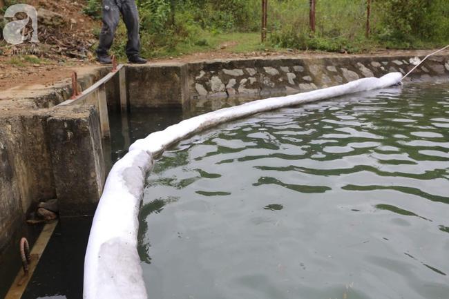 Đang triển khai lắp đặt hệ thống lưới lọc dầu trên suối Trâm và hồ Đầm Bài - Ảnh 8.