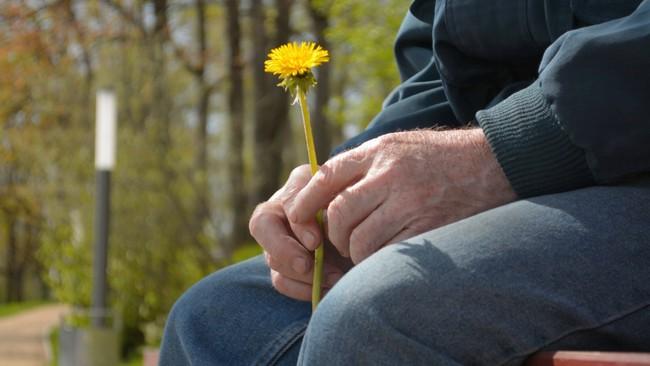 senior-retired-old-man-holding-footage-089702386prevstill-1571404755387679323834.jpeg