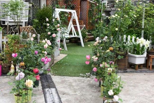 Biến sân thượng trống thành khu vườn đủ loại cây hoa đẹp như công viên, gia đình trẻ khiến nhiều người ghen tị - Ảnh 1.