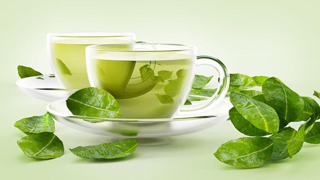 green-1571849964425325148840.jpg