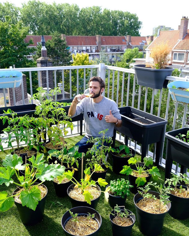 Anh chàng điển trai khiến hàng nghìn cô gái ngưỡng mộ khi trồng cả một sân thượng rau quả xanh tươi - Ảnh 2.