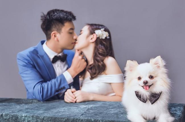 Tấm hình hài nhất đám cưới nhà người ta: Cô dâu lao ra đường, lôi bằng được chó cưng về chụp ảnh cùng! - Ảnh 8.