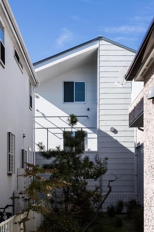 Ngôi nhà độc đáo gắn liền với thiên nhiên dù vị trí nằm ngay trong phố lớn ở Nhật Bản - Ảnh 3.