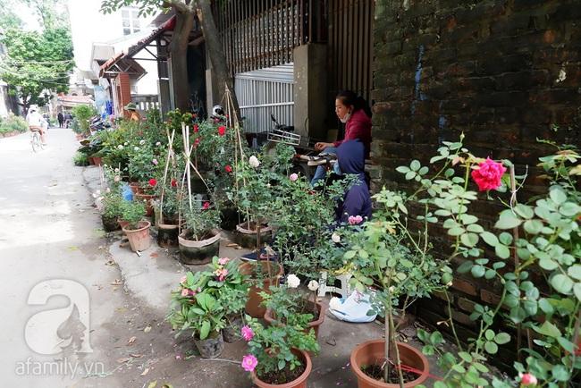 Chợ phiên trong lòng phố: Mua thực phẩm sạch với giá rẻ mà không cần bố mẹ ở quê đóng thùng nhỏ thùng to ứng cứu - Ảnh 11.