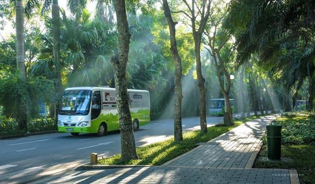 bus-3-1573533777073722341240.jpg