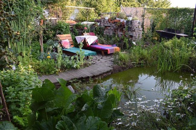 Khu vườn rau quả sạch chen chúc nhau tốt tươi của người đàn ông từ nhỏ đã mơ ước trở thành nông dân - Ảnh 4.