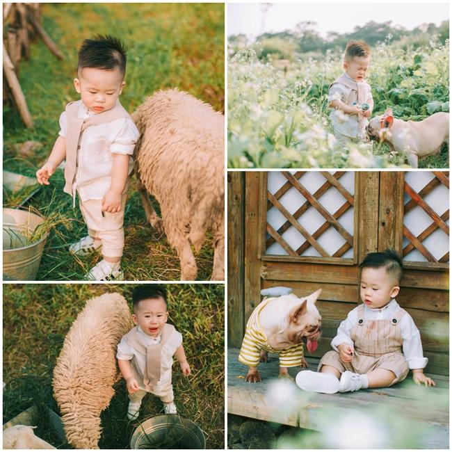 """Cười lăn với bộ ảnh cậu bé chăn cừu bên """"suối nước mắt"""" cực kute của bé trai 1 tuổi - Ảnh 3."""
