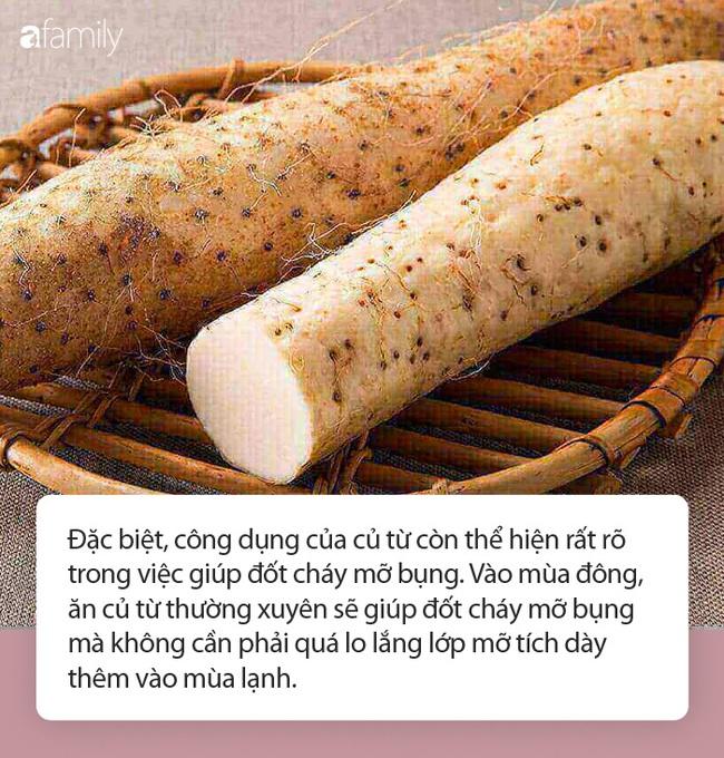 Thứ củ xù xì càng ăn càng đốt mỡ bụng cực tốt vào mùa lạnh còn là thuốc quý trong Đông y - Ảnh 3.
