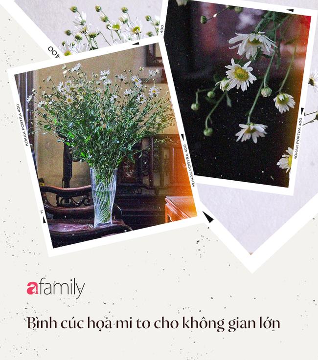 Mùa cúc họa mi nở rộ, học ngay các cách cắm hoa từ dễ đến rất dễ, chỉ 100K được hẳn 4 bình cúc xinh xắn cho cả nhà  - Ảnh 4.