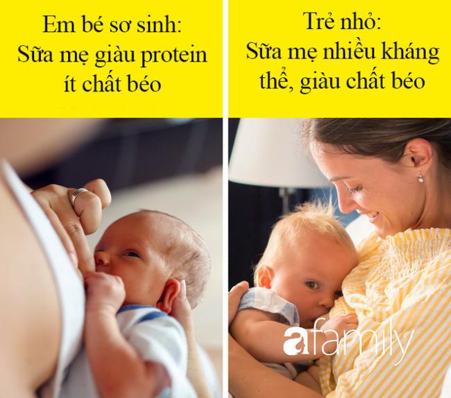 Được khuyên là nên cho con bú mẹ sau khi sinh, nhưng liệu đã có mẹ nào đã biết hết những điều kỳ diệu mà sữa mẹ mang lại hay chưa? - Ảnh 3.