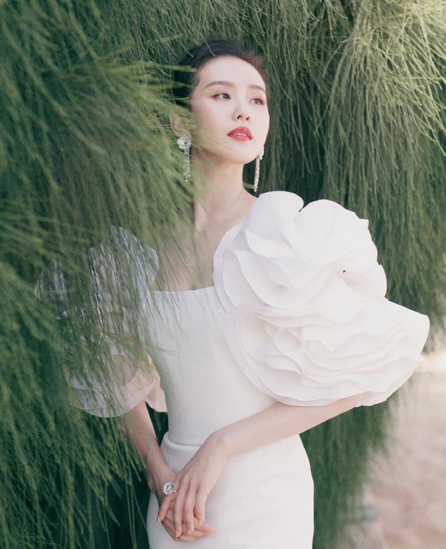 """Giữa dàn mỹ nhân lộng lẫy tại Kim Kê Bách Hoa 2019, Lưu Thi Thi lại là nhân vật """"gây bão"""" vì nhan sắc của """"gái một con"""" - Ảnh 8."""