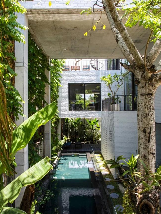 Ngôi nhà đầy gió tự nhiên, cây xanh và ánh sáng thân thiện với môi trường dành cho gia đình 5 người ở Đà Nẵng - Ảnh 6.