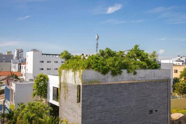 Ngôi nhà đầy gió tự nhiên, cây xanh và ánh sáng thân thiện với môi trường dành cho gia đình 5 người ở Đà Nẵng - Ảnh 15.