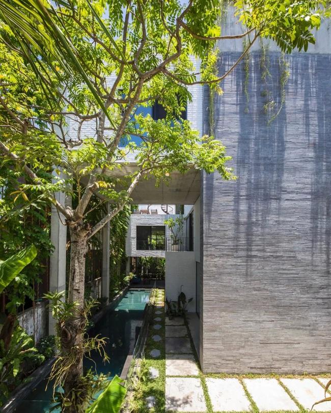 Ngôi nhà đầy gió tự nhiên, cây xanh và ánh sáng thân thiện với môi trường dành cho gia đình 5 người ở Đà Nẵng - Ảnh 1.
