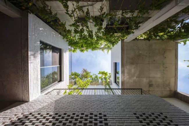 Ngôi nhà đầy gió tự nhiên, cây xanh và ánh sáng thân thiện với môi trường dành cho gia đình 5 người ở Đà Nẵng - Ảnh 12.