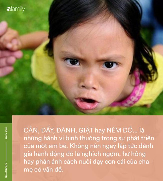 """Parent coach Linh Phan: """"Hãy chỉ cho tôi một em bé chưa từng cắn, đánh hay ném đồ, tôi sẽ chỉ cho bạn một con lợn biết bay"""" - Ảnh 1."""
