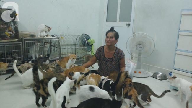 """""""Người mẹ"""" của 400 con mèo ở Sài Gòn bật khóc tức tưởi khi bị tông xe còn mang tiếng oan đi bắt trộm mèo - Ảnh 3."""