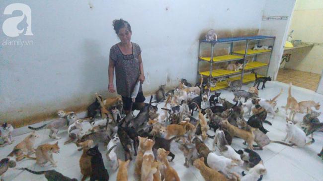 """""""Người mẹ"""" của 400 con mèo ở Sài Gòn bật khóc tức tưởi khi bị tông xe còn mang tiếng oan đi bắt trộm mèo - Ảnh 10."""