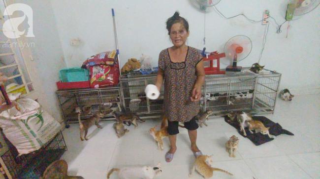 """""""Người mẹ"""" của 400 con mèo ở Sài Gòn bật khóc tức tưởi khi bị tông xe còn mang tiếng oan đi bắt trộm mèo - Ảnh 12."""