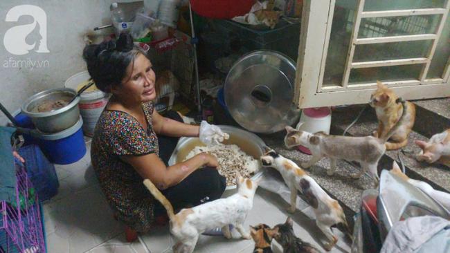 """""""Người mẹ"""" của 400 con mèo ở Sài Gòn bật khóc tức tưởi khi bị tông xe còn mang tiếng oan đi bắt trộm mèo - Ảnh 5."""