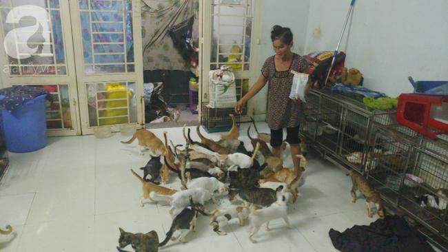 """""""Người mẹ"""" của 400 con mèo ở Sài Gòn bật khóc tức tưởi khi bị tông xe còn mang tiếng oan đi bắt trộm mèo - Ảnh 8."""