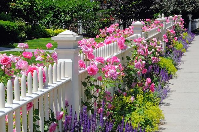 15 ý tưởng lắp hàng rào để vừa tăng cường an toàn lại vừa giúp ngôi nhà thêm phần phong cách - Ảnh 9.