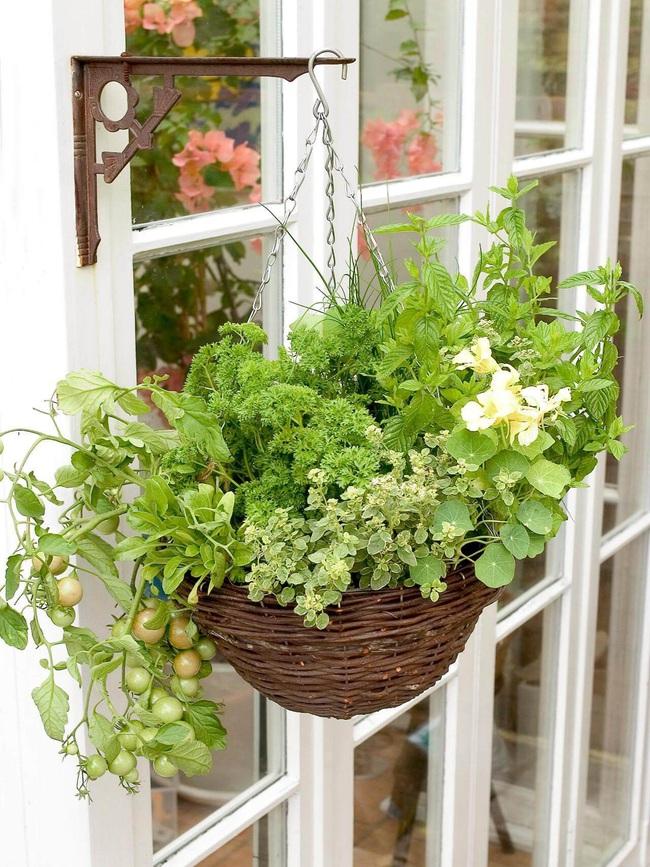 Những ý tưởng cùng mẹo thiết kế vườn rau siêu tuyệt vời giúp không gian nhỏ hẹp cũng thành đáng mơ ước - Ảnh 3.