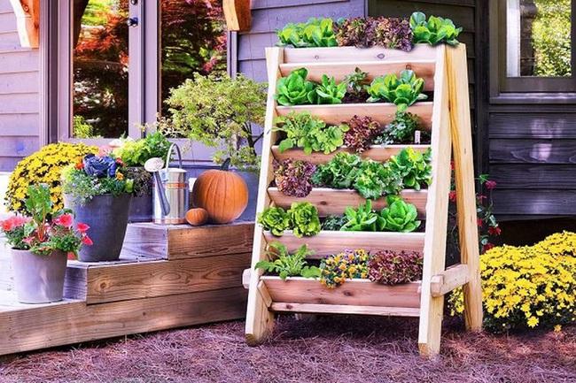 Những ý tưởng cùng mẹo thiết kế vườn rau siêu tuyệt vời giúp không gian nhỏ hẹp cũng thành đáng mơ ước - Ảnh 5.
