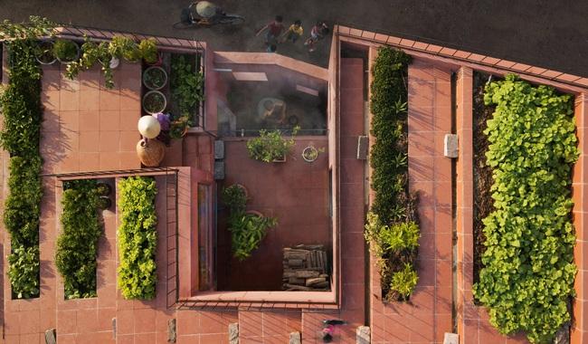 Vườn rau 7 bậc thang xanh tươi trên mái nhà của vợ chồng trung niên được các con xây tặng ở Quảng Ngãi - Ảnh 3.