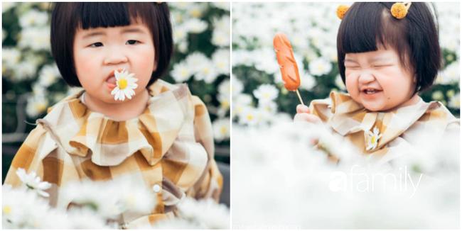 """Cười nghiêng ngả với bộ ảnh """"Đang đói còn bắt chụp hình"""" của bé gái giữa vườn cúc họa mi - Ảnh 5."""