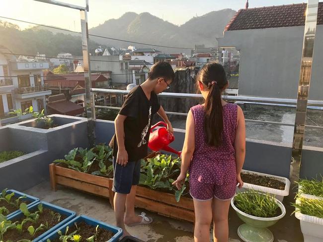 Sân thượng 50m2 với rau xanh và quả ngọt đẹp như tranh vẽ của gia đình 4 người ở TP Sơn La - Ảnh 2.