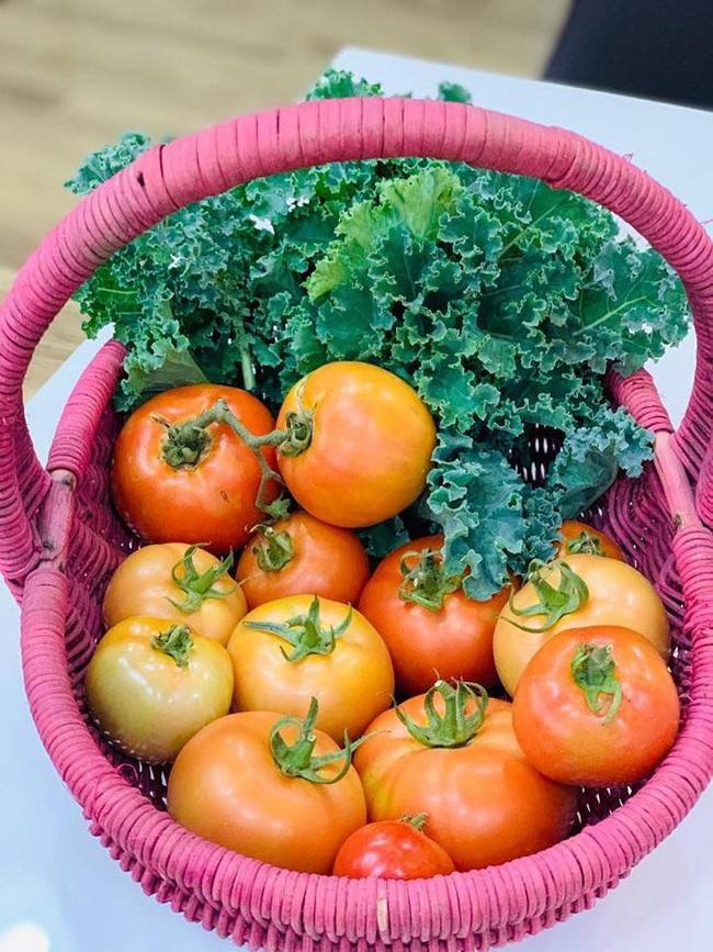 Sân thượng 50m2 với rau xanh và quả ngọt đẹp như tranh vẽ của gia đình 4 người ở TP Sơn La - Ảnh 9.