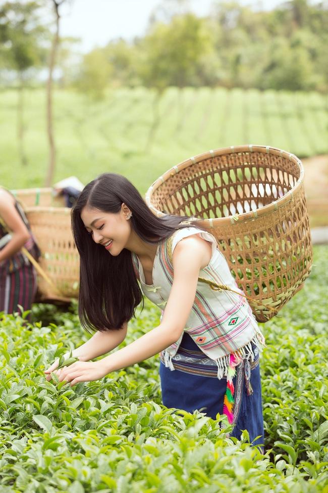 Đỗ Mỹ Linh - Kiều Loan hóa thôn nữ khoe sắc giữa đồi trà - Ảnh 4.