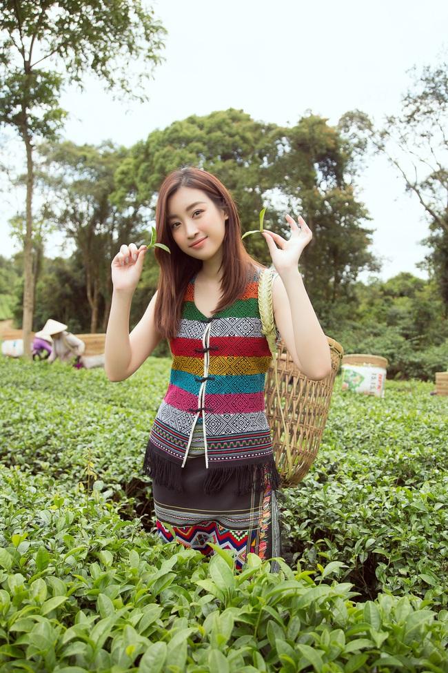 Đỗ Mỹ Linh - Kiều Loan hóa thôn nữ khoe sắc giữa đồi trà - Ảnh 2.