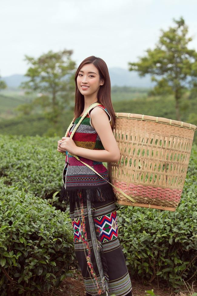 Đỗ Mỹ Linh - Kiều Loan hóa thôn nữ khoe sắc giữa đồi trà - Ảnh 9.
