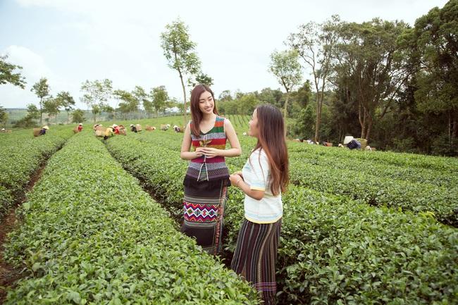 Đỗ Mỹ Linh - Kiều Loan hóa thôn nữ khoe sắc giữa đồi trà - Ảnh 10.