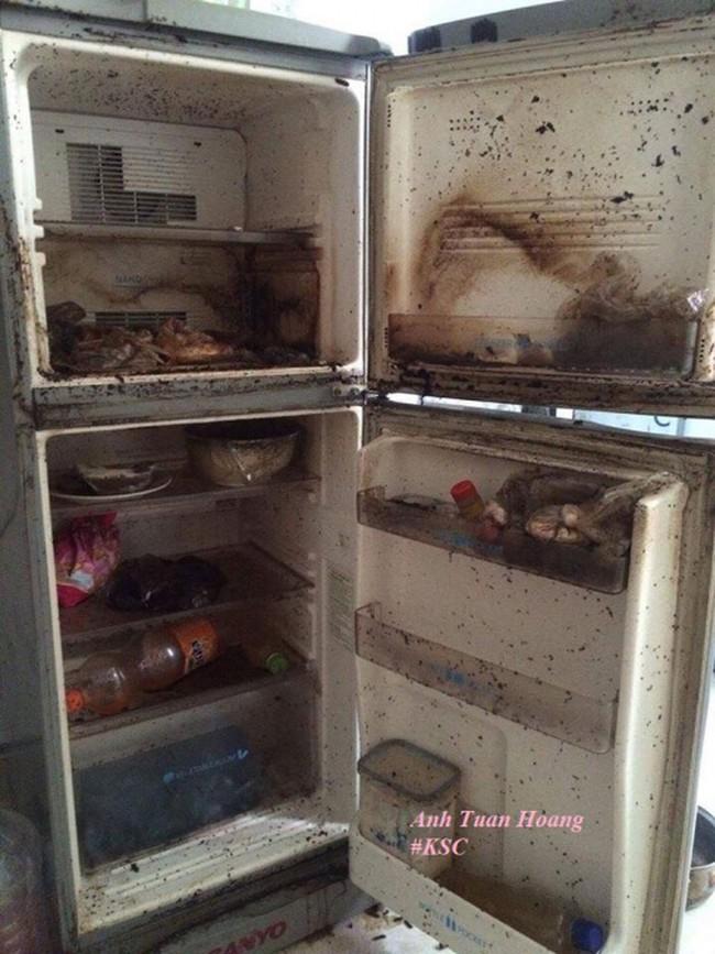 Trở lại phòng trọ sau Tết, chàng trai sốc nặng khi mở tủ lạnh ra - Ảnh 7.